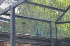 Tierpark Straubing mit Flutopferkindern 005